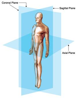 Anatomic Planes